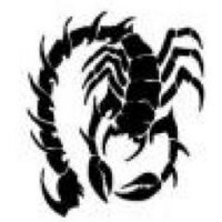 Scorp   Social Profile