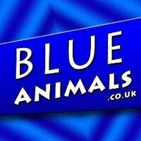 Blue Animals | Social Profile