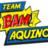 @TeamBamAquino