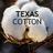 TexasCotton_ profile