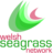 Welsh Seagrass