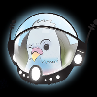 Space Budgie | Social Profile