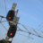 starting_signal
