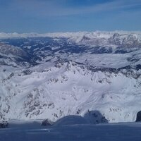 alpinskitweets