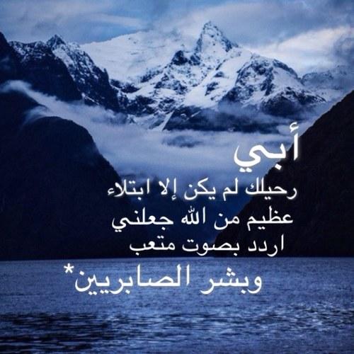 آمنه الكبيسيّ. Social Profile