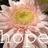 hope_1267