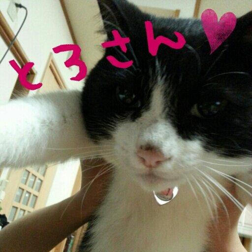 miyu Social Profile