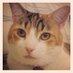 Karen Dixonova's Twitter Profile Picture