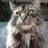MarySmi06115207 profile