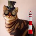 shewhotalkstocats (@judeblackcat) Twitter