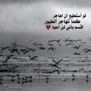 الندااوي (@0014_hh) Twitter