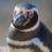 マゼランペンギンbot