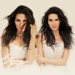Angie Harmon Online Social Profile