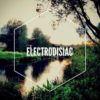 electrodisiac.com