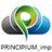 PRINCIPIUM_imp profile