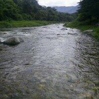 강물처럼 | Social Profile