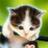 動物の赤ちゃん画像 animal_babies のプロフィール画像