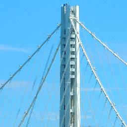 The Bay Bridge Social Profile