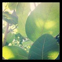 kaory | Social Profile