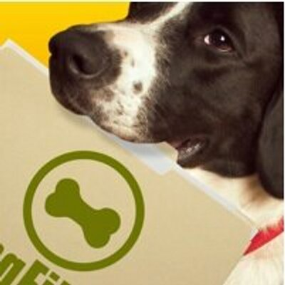 Dog Files | Social Profile
