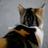 The profile image of luno_f6