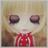 The profile image of hanasakumichiru