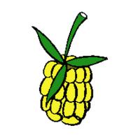 raspberrypipost