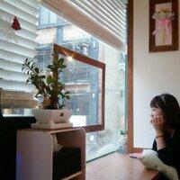 lemon tree | Social Profile