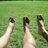 FX_barefoot