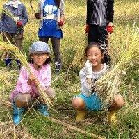 上総自然学校 | Social Profile
