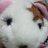 adorable_sakura