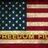 FreedomFile1776 profile