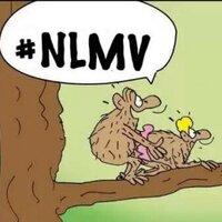 NlmvTime