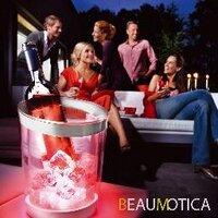 @Beaumotica - 1 tweets