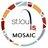 STL Mosaic Project