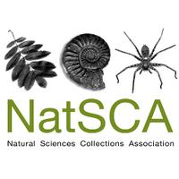 @Nat_SCA