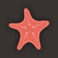 The Starfish | Social Profile