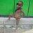 Mike_Tanggo74