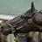 @horsemanlawyer