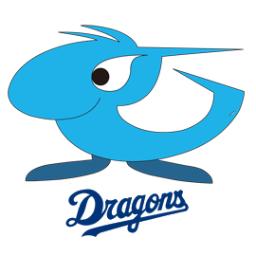 中日ドラゴンズ 軟式 Social Profile