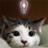 funny_tishiki