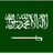 Saudi_News_ profile