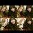 @daichi_79