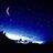 @Star_Night_Xmas