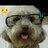 @henryterrypanda