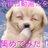 omoshiro_movies