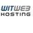 witweb.ch Icon