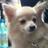 hone_okinawa