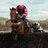 SportsTips123 profile