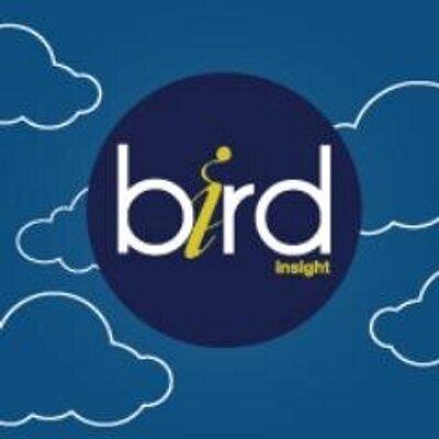 Bird Insight